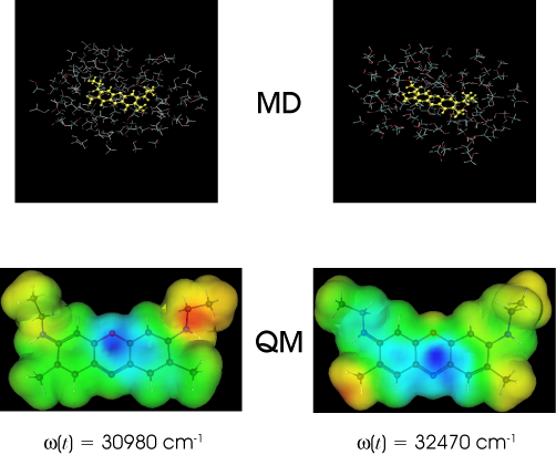 Hybrid Molecular Dynamics-Quantum Mechanics Simulations of
